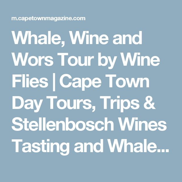 Whale, Wine and Wors Tour by Wine Flies | Cape Town Day Tours, Trips & Stellenbosch Wines Tasting and Whales Watching in Hermanus
