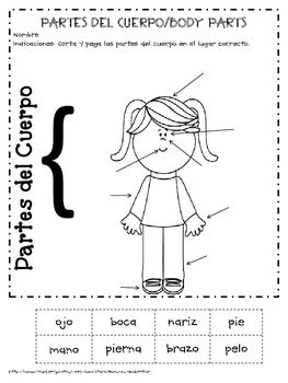 FREE ~ SPANISH: Girl and Boy Body Parts