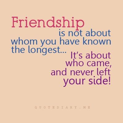 Top 50 Best Friendship Quotes #real Friendship quote