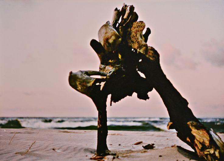 "Yury Ermolenko, ""JAPANESE ACTOR"" (Land art project ""Baltic - Hel""), 2003, Hel Peninsula, Baltic Sea, Poland #YuryErmolenko #юрийермоленко #ЮрийЕрмоленко #yuryermolenko #юрiйєрмоленко #ЮрiйЄрмоленко #юрийермоленкохудожник #landart #balticsea #sea #sky #amazing #RapanStudio #photo #photography #metaphysics #metaphysical #philosophy #installation #лэндарт #инсталляция #art #contemporaryart #modernart #magic #texture #лэндарт #poland #hel #helpeninsula #artproject #искусство #creative"