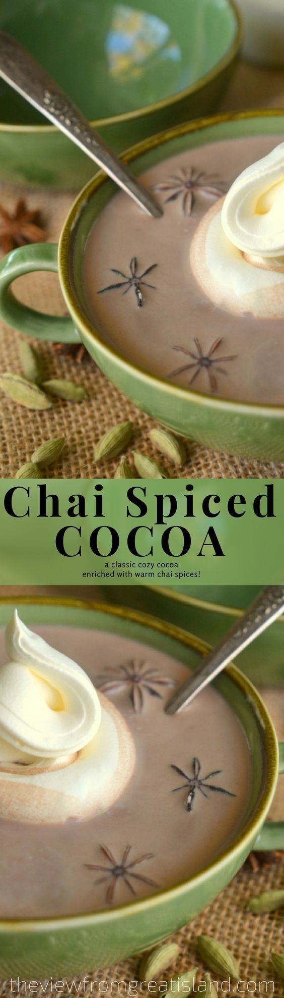 Chai Spiced Cocoa~ a classic thick hot cocoa enriched with the warming spices of chai tea! #hotchocolate #beverage #winterdrink #chai #chaitea #Chrismtasbeverage #chocolate #cinnamon #anise #cardamom #hotcocoa