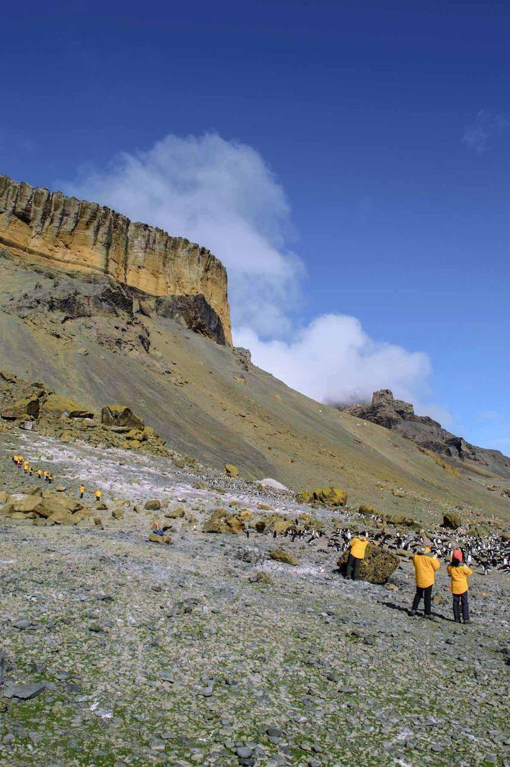Brown Bluff in the South Shetland Islands, Antarctica | heneedsfood.com