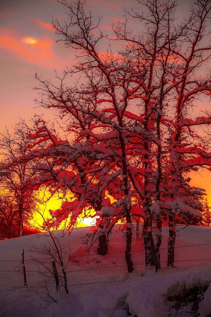 Winter ... fire and ice sunset