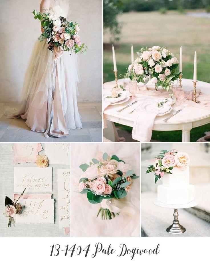 Pale Dogwood, il rosa pallido Pantone per i matrimoni 2017