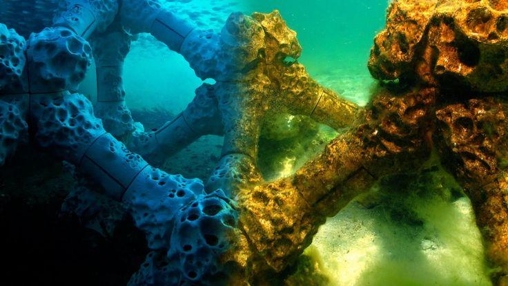 Los corales son una de las especies que más están sufriendo los efectos del calentamiento global del planeta. Su deterioro y reducción es evidente en varias zonas. En algunos lugares del planeta se está llevando acabo un experimento que puede frenar este deterioro. La solución: crear estructuras coralinas con impresoras 3D