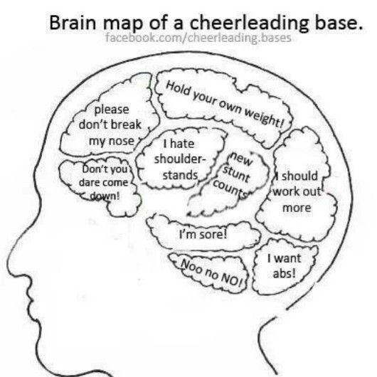 Cheer brain