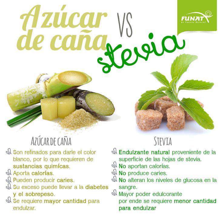 Conoce las diferencias entre el azúcar y la stevia ¿Cuál