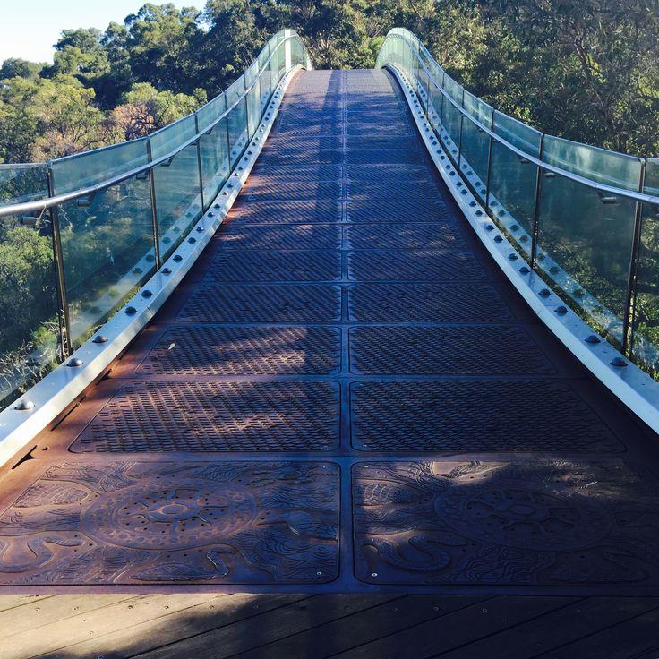 Glass Bridge of the Tree Top Walkway located in Kings Park & Botanic Garden, Perth, Western Australia.
