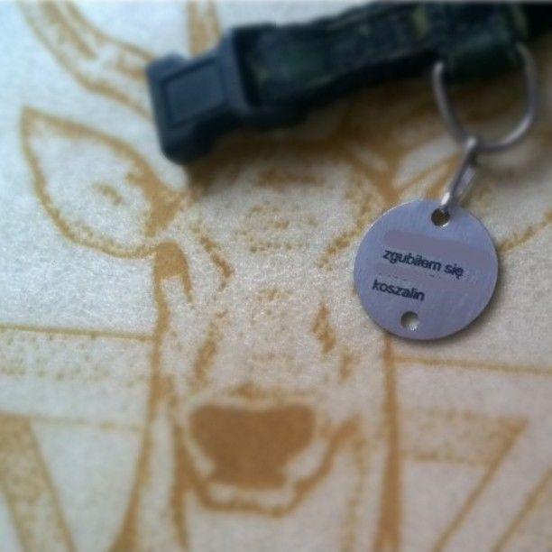 #NAME #TAG #DOG #CAT #PET #ID #customized #jewelry #brass #imiennik #identyfikator #adresówka #dowolny #napis #imię #pies #kot #zwierzęta #zawieszka #koszalin #warszawa #polska #Deutschland #love #engraving #fashion #designer #design #logo