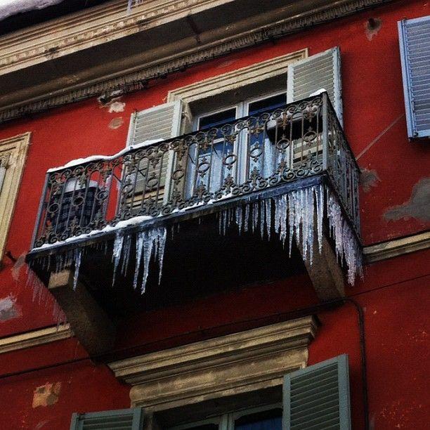 Torino polare