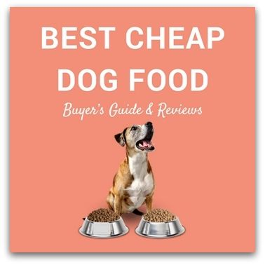The market for dog food is saturated and finding the best cheap dog food is a herculean task. We have rounded up the five best cheap dog food.