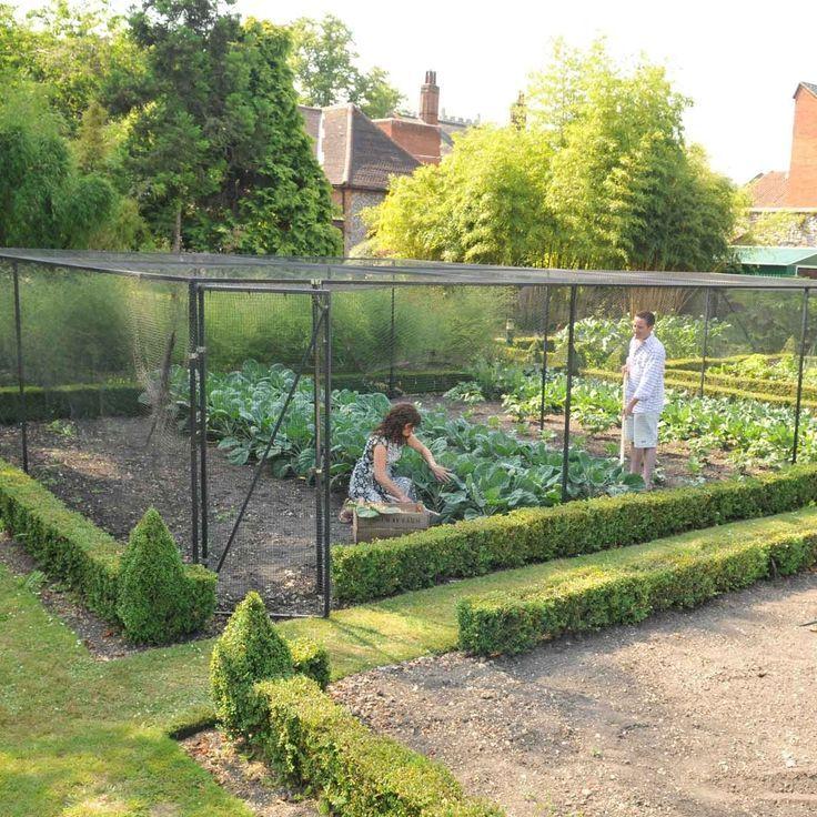 Cage gardening.   Love it.