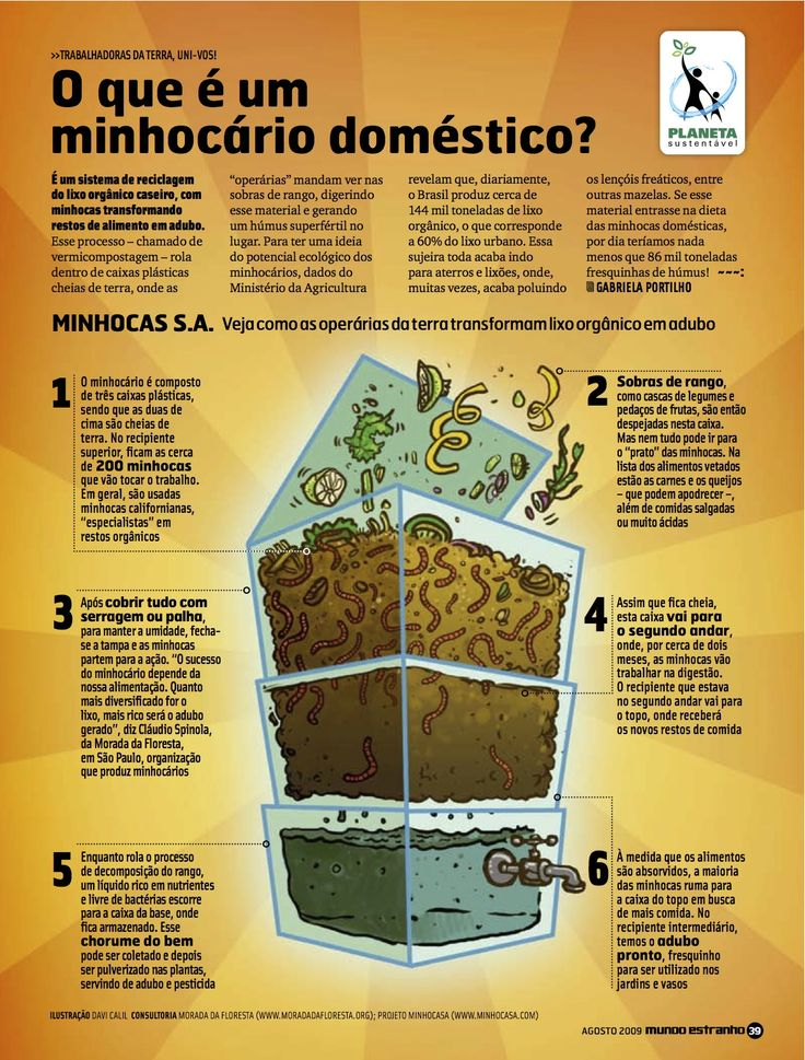 Composteiras Domésticas - Loja Morada da Floresta