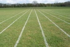 Parallel Lines in the Coordinate Plane ( Real World ...
