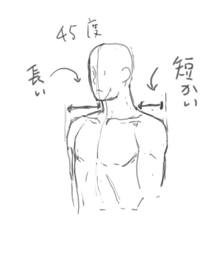 お絵かき研究 肩の描き方 斜め45度 ペットボトルロケットロール 描き方 スケッチのテクニック アニメベース