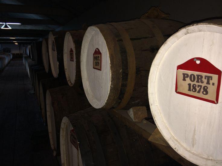 oldest wine i tasted 1878