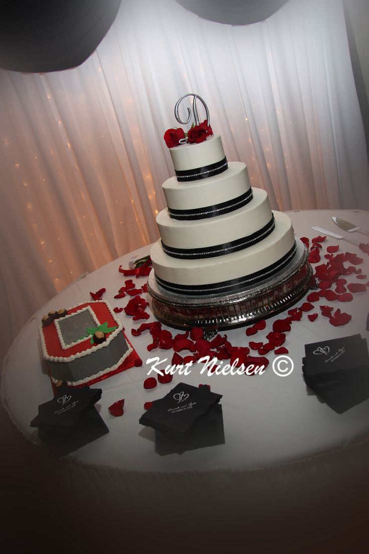 Ryan And Amanda A Real Toledo Wedding By Kurt Nielsen Photography Themed Cakesthemed Weddingsohio
