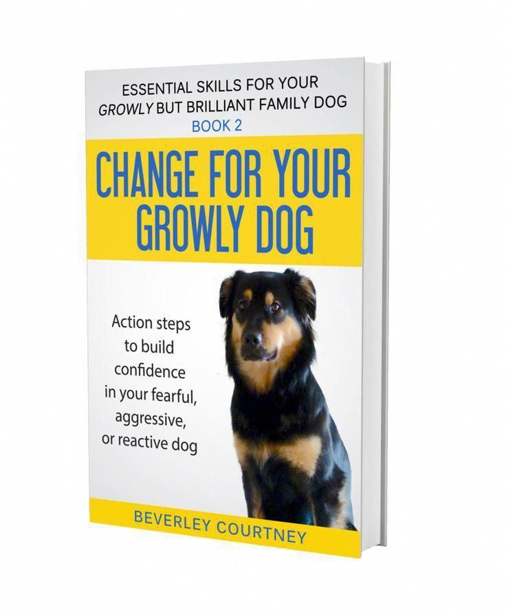 Pin On Dogs Need Training