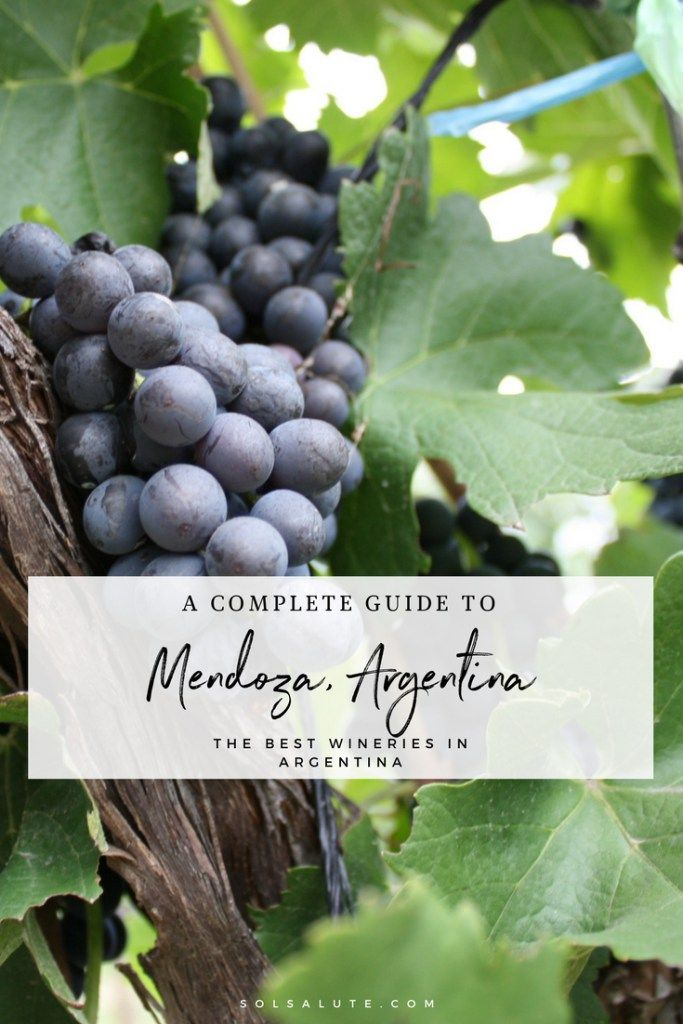 Complete Guide to Mendoza, Argentina: The best wineries to visit in Mendoza #Mendoza #Argentina