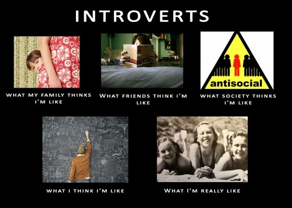 Introverts.  What we are really like...