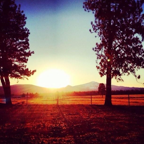 #Oregon #centraloregon #bendoregon #trees #sun #sunset #sky #skyporn #mountains #field #beautiful #vacation: Mountain Fields, Favorite Places, Future Vacations Stil, Beautiful Vacations, Favorite Seasons, Bendoregon Trees, Fields Beautiful, Sunsets Skiing, Centraloregon Bendoregon