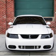 2004 Ford Mustang Terminator Cobra Oxford White Front Grille