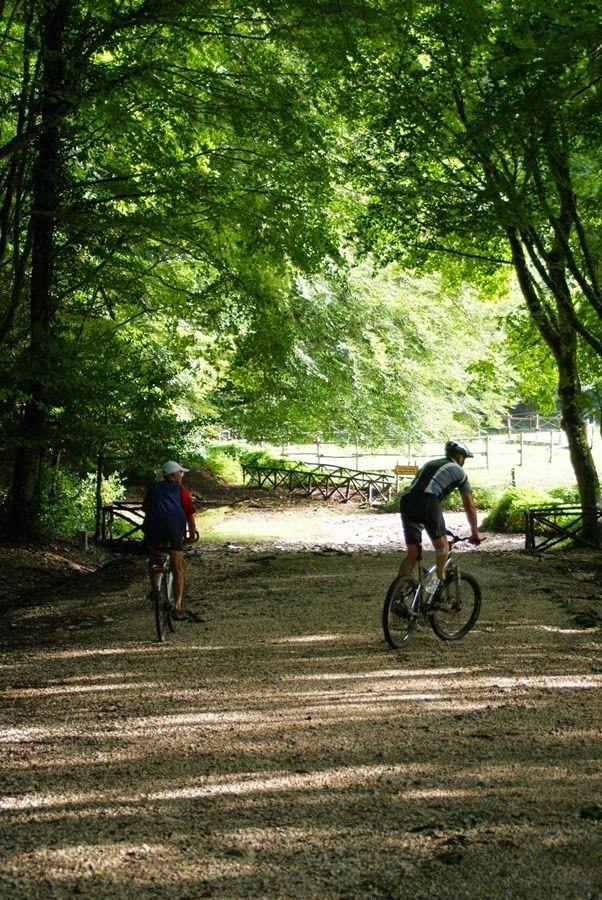 Umbra Forest in Gargano bike