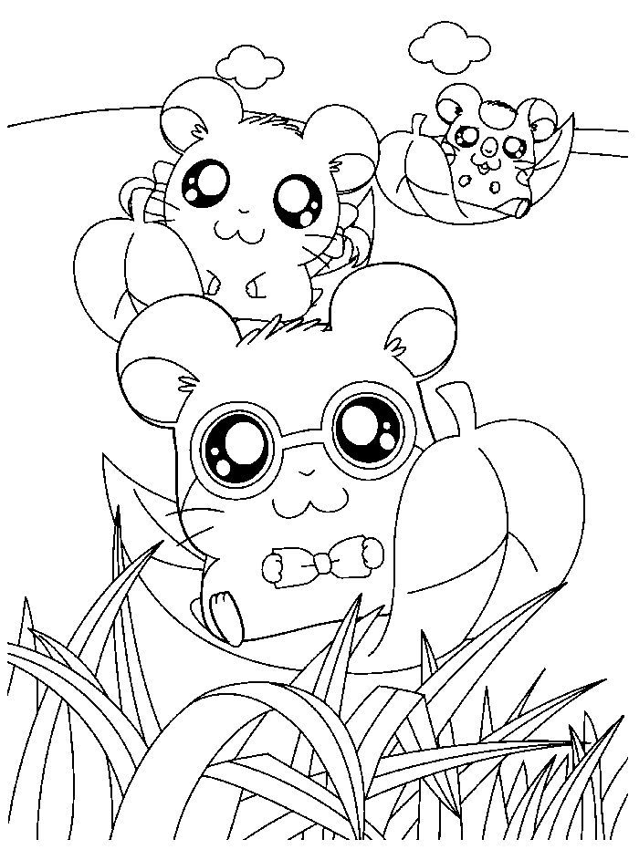 Cartoon Hamster Coloring Pages Animal Coloring Pages Coloring Books Free Coloring Pages