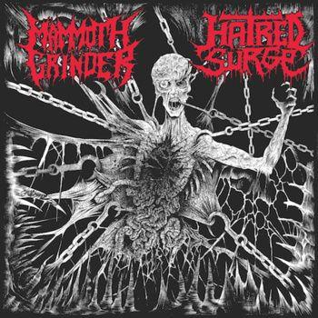 "12"" Split w/ Hatred Surge cover art"