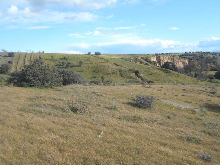 Aledaños de la carretera TO-9312 entre Castillo de Bayuela  y Garciatum.