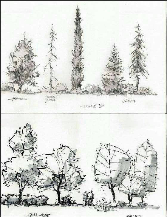 Architekturgrafiken Bäume: 13 Tausend Bilder … – #architekturgrafiken #baume …  # Wohn Architektur