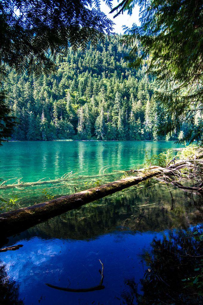 Vancouver Island (por *Lanfeust*)