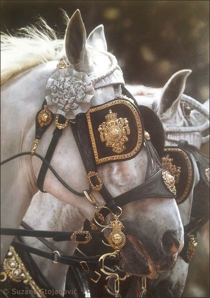 Fairytale Horses
