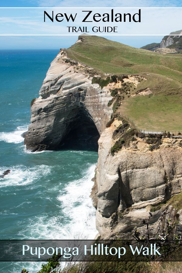 A guide to the Puponga Hilltop Walk. Includes views of Wharariki Beach, Cape Farewell, and the Farewell Spit. South Island, New Zealand. #newzealand #nz #wharariki #capefarewell #travel #photography