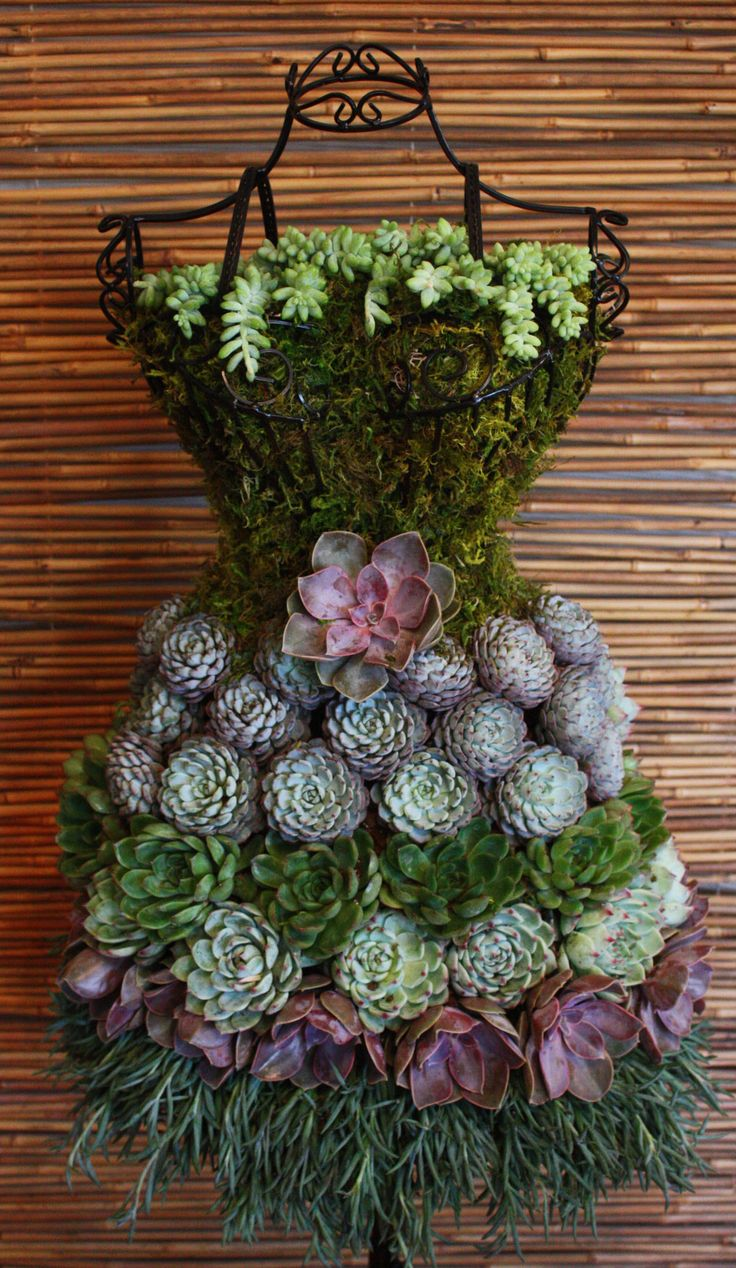 Unique diy home garden decor with a shoe planter and succulents - Diy Tutorial Real Succulents On A Wire Dress Form