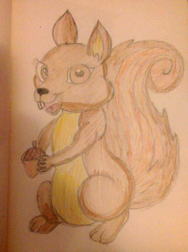 Squirrel (:
