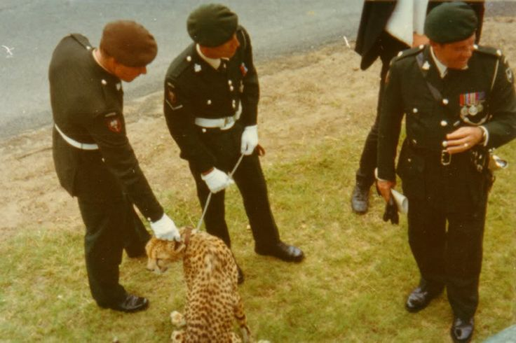 Rhodesian soldiers of the 1st Batallion, The Rhodesian Light Infantry in dress uniform with their mascot, a Cheetah.
