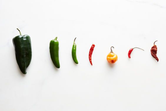 All About Chiles on Food52