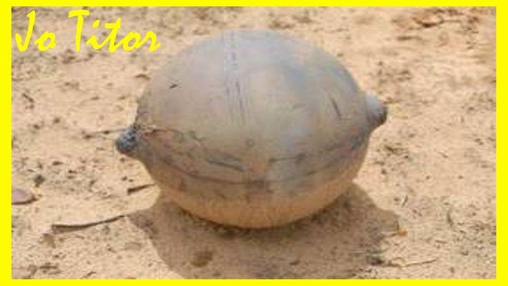 Misteri: Oggetto Namibia ufo o detrito spaziale?