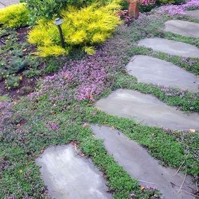 Gravel Stepped Path   Stone Walkways   16 Easy to Imitate Garden Paths    Bob VilaBest 25  Stepping stone walkways ideas on Pinterest   Stepping  . Garden Paths And Stepping Stones. Home Design Ideas