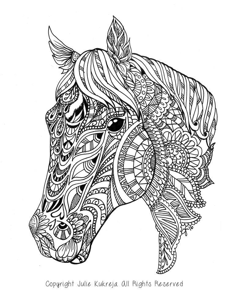 Custom Pet Portrait, horse, adult coloring book style by ...