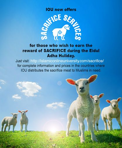 Islamic Online University now offers SACRIFICE SERVICES for those who wish to earn the reward of SACRIFICE during the Eid ul Adha Holiday.   Visit http://islamiconlineuniversity.com/sacrifice/ for complete information and prices in the countries where IOU distributes the sacrificial meat to Muslims in need.  Email us at info@iou.edu.gm for further assistance in sha Allah