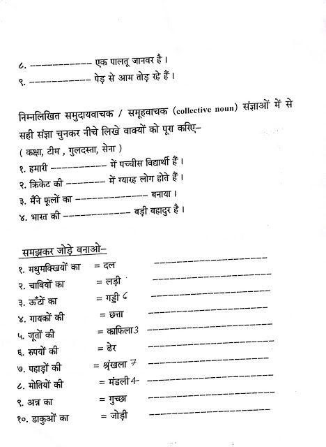 Hindi Grammar Work Sheet Collection For Classes 5 6 7 8 Noun