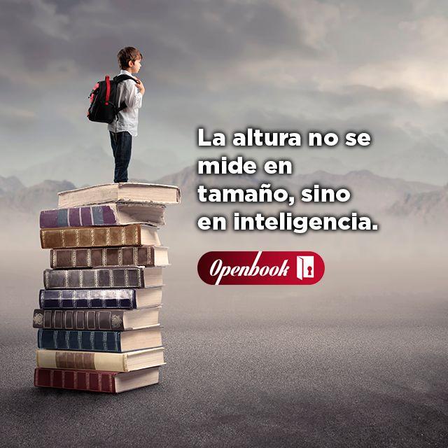 Dale a tus hijos la mejor herramienta para desarrollarse intelectualmente: el curso de www.openbook.mx