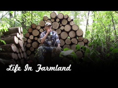 Helpful tips for splitting firewood by hand - YouTube