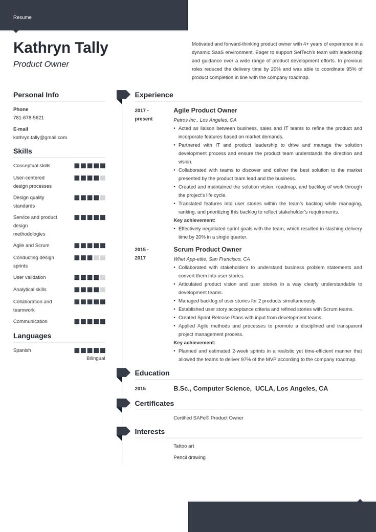 product owner resume example template modern in 2020