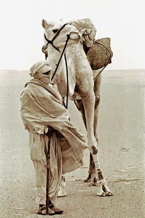 Dar Kawa: 1JOUR1PHOTO*23.06.14 (Moroccan photo blog)