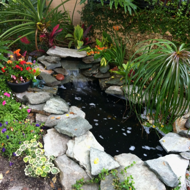 8 best Front-yard pond ideas images on Pinterest   Pond ... on Front Yard Pond  id=52201