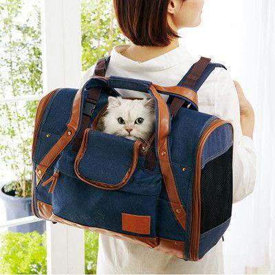 猫が入るリュックが便利で快適! そして何よりすごく可愛い!   マイナビニュース