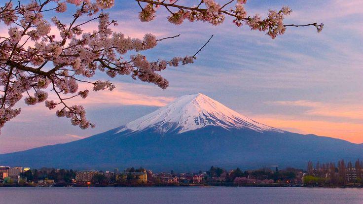 Risultati immagini per japanese landscape